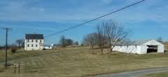 miller farm today